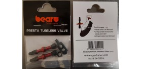BEAR SACHET DE 2 VALVES TUBELESS ACIER 34MM